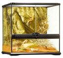 ☆爬虫類ケージ リクガメ トカゲ 水槽/ エキゾテラ グラステラリウム4545 PT2605