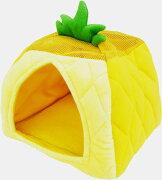 みんなのテントハウス パイナップル