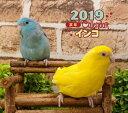 2019 ミニカレンダー インコ