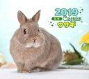 2019 ミニカレンダー ウサギ