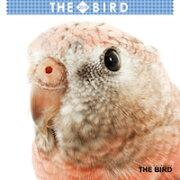 2019年ミニカレンダー THE BIRD(鳥)【オリジナルステッカー付き】
