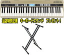 Roland JUSTY HK-100 ハーモニー&リズム練習用キーボード キーボードスタンド プレゼント! - アラバスタ ミュージック