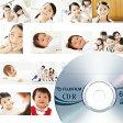 【送料無料】【ポイント10倍】 CD-R書き込み デジカメ・スマホ・タブレットの画像データのバックアップに最適 【メール便OK】