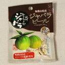 【メール便可】紀州かつらぎ山の「ジャバラピール」mini(新岡農園)花粉対策に甘くてほろ苦い大人の味のオレンジピールお試しミニサイズ