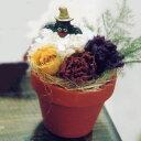 【母の日ギフト】プリザーブドフラワーのハロウィーンアレンジ「ミニバット」