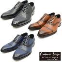 FRANCO LUZI フランコルッチ ストレートチップ ビジネス シューズ TH901 紳士靴 【nesh】 【新品】