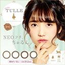 【2箱セット】カラコン 1day エンチュール em TULLE 1箱10枚入 度あり 度なし AKB48 加藤玲奈 かとれな 14.2mm ナチュラル 【送料無料】