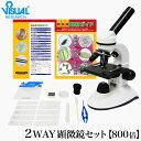 【クーポンあり】新日本通商 学習用 2Way 顕微鏡 800...