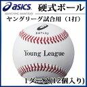 アシックス 硬式野球ボール ヤングリーグ試合用(1打) BQYLD2 asics 1ダース 【12個入り】