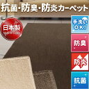 日本製 防炎 抗菌 防臭 吸湿 ループカーペット 江戸間6畳 261×352cm ホットカーペット対応 国産 ラグ マット 長方形 ウェルバ 送料無料