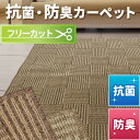 抗菌 防臭 カーペット 江戸間6畳 261×352 ラグ マット フリーカット ホットカーペット対応 長方形 チェックモア 送料無料 平織り
