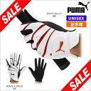 5枚以上同時購入で送料無料 日本正規品 golf ゴルフ用品 グローブ メンズ 男性 レディース 女性 兼用 手袋 ゴルフグローブ puma 激安 sale 楽天 通販
