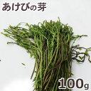 あけびの芽100g予約販売天然・あけびの芽100g(大小バラ詰め)※送料別(クール便)