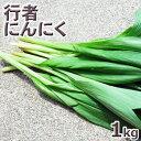 行者ニンニク1kg予約販売【5月中旬〜発送予定】天然・【葉が開いた】行者にんにくまと