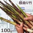 根曲り竹100g予約販売【ご注文日:6/20分 出荷中】天然・根曲り竹100g(大小バラ詰め)