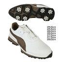 プーマ ゴルフ エース BOA WHITE-BRONZE-BLACK 18866103送料無料 シューズ 靴 スパイク 孔球 打球 シューズスパイク 靴スパイク プーマ 25.0cm・25.5cm・26.0cm・26.5cm・27.0cm・27.5cm・28.0cm【D】