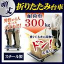 スチール台車 耐荷重300kg SLD-H001BL 送料無...