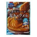 カンロ 濃厚ほろにが塩キャラメルキャンディ 70g×12個 【送料無料】