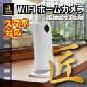 【匠ブランド】 【ホームカメラ】 WiFiホームカメラ 「Smart Pole(スマートポール)」 NCH03460206-A0 【送料無料】【10P05Nov16】