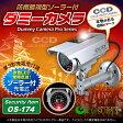 ソーラーバッテリー付 防雨タイプ ダミーカメラ 「 OS-174 」【10P01Oct16】