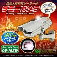人感センサー 明暗センサー ソーラーバッテリー付 防雨型 ダミーカメラ「 OS-162W 」【10P03Dec16】