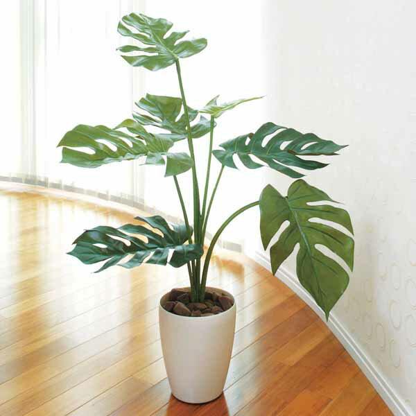 光触媒 植物 インテリアグリーン 観葉植物 モンステラ 人工観葉植物 フェイク 人工植物 …...:arne-interior:10012842