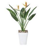 観葉植物 植物 光触媒 グリーン ストレチア 花付きS 高さ100cm 人工観葉植物 人工植物 インテリア フェイクグリーン イミテーション 造花 消臭 抗菌 ホルムアルデヒド 分