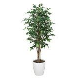光触媒 観葉植物 ロイヤル ベンジャミン 高さ180cm 大型 フェイクグリーン 人工観葉植物 人工植物 インテリア 造花 消臭 抗菌 防汚 ホルムアルデヒド 分解 水やり不要 イ
