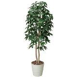 光触媒 観葉植物 インテリアグリーン パキラ ツリー 高さ160cm 大型 人工観葉植物 人工植物 インテリア フェイクグリーン 造花 消臭 抗菌 防汚 ホルムアルデヒド 分解 ア