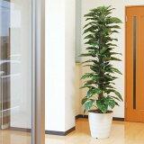 光触媒 観葉植物 ジャイアントポトス 高さ180cm 大型 人工観葉植物 人工植物 インテリア フェイクグリーン 造花 消臭 抗菌 防汚 ホルムアルデヒド 分解 水やり不要 アート