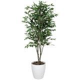 観葉植物 植物 光触媒 グリーン ベンジャミン ツリー 高さ180cm 大型 人工観葉植物 人工植物 インテリア フェイクグリーン 造花 消臭 抗菌 防汚 ホルムアルデヒド 分解
