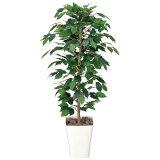 光触媒 観葉植物 フィカス ベンジャミン 班入り 高さ120cm 人工観葉植物 人工植物 インテリア フェイクグリーン 造花 消臭 抗菌 防汚 ホルムアルデヒド 分解 水やり不要