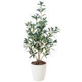 光触媒 観葉植物 オリーブ イミテーショングリーン フェイクグリーン グリーン 高さ90cm 光触媒人工観葉植物 イミテーション インテリアグリーン 光触媒人工植物 人工観葉植物
