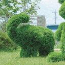 人工観葉植物 イミテーショングリーン 観葉植物 人工植物 アートグリーン グリーン ガーデニング オブジェ 置物 動物型 アニマル 象 ガーデン トピアリー 雑貨 ゾウS 高さ50cm(Sサイズ) 母の日ギフト プレゼント ギフト 引越し祝い 新築祝い