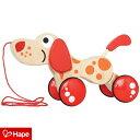 引き車 プルトイ 木のおもちゃ おもちゃ あんよ 練習 歩く練習 ベビーウォーカー ベビー 赤ちゃん 子供 キッズ 犬 い