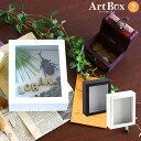 標本箱 小型 シーラ箱 標本 箱 昆虫 ギフトボックス 透明 クリア ボックスフレーム 立体額 ラッピング箱 ラッピング用品 ラッピング ボックス ディスプレイ インテリア ギフト アートボックス ディスプレイボックス プレゼントボックス ケース ホワイト ブラック ArtboxS