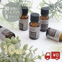 【 10ml MORE モア 5本セット 】お試し�