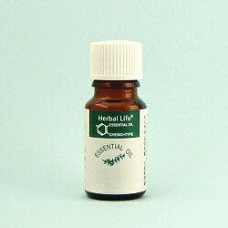 生活の木 エッセンシャルオイル ベンゾイン(安息香) (精油25%の希釈液) 10ml