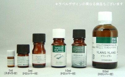 生活の木 エッセンシャルオイル ユーカリ・シト...の紹介画像2