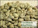 グァテマラ 選べる焙煎豆 200g 有機JAS認証オーガニックコーヒー【フェアトレード】 【ストレートコーヒー】 アプリコットのようなフルーツ系のアロマと強い酸味。