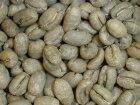 ドミニカ・ピーベリー 選べる焙煎豆 200g 【ストレートコーヒー】 酸味の中に蜂蜜のフレーバーを感じさせる