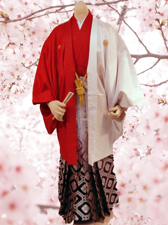 No.85-No.335 Lilianne 紅白ツートン 卒業式 成人式 男性用 紋服セット レンタル!