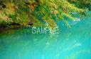 風景写真ポスター 福島 裏磐梯 五色沼 瑠璃色の水面に映る木々 osp-125
