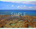 風景写真ポスター南大東島 島の大自然に魅せられて 59.4×44cm osp-54