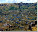 イースター島 ラノカウ火口湖 風景写真パネル MOAI-31-F20
