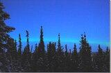 夕暮れのオーロラ写真 アラスカ 壁飾り写真パネル 53×33.3cm AUR-32-M10【楽ギフ包装】【楽ギフのし宛書】