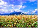 磐梯山と蕎麦の花 福島 CG写真パネル 60.6×45.5cm CG-042-P12【楽ギフ_包装】