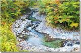 ポスターとは違うそのまま飾れる額のいらないインテリア 中津川渓谷 秋の紅葉 福島 風景写真パネル