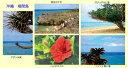 風景写真 ポストカード 沖縄 鳩間島の海 お得な5枚セット【...
