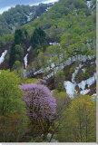 朝日村3 山形 風景写真パネル